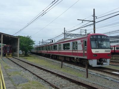 P1110369.jpg