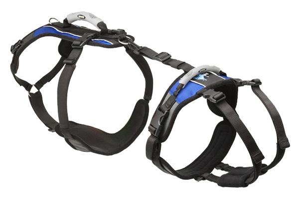 large-harness-600.jpg