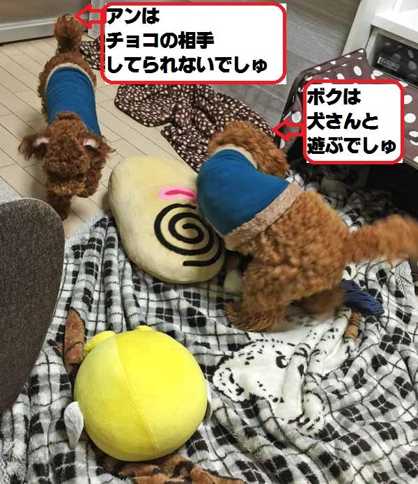 20150127101912edd.jpg