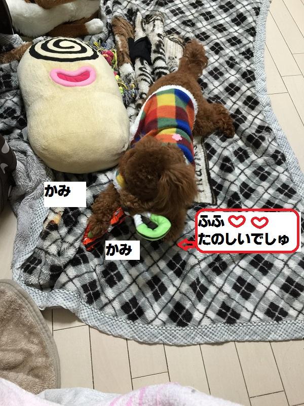 20150211084717adf.jpg
