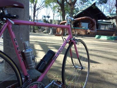 photo_haturun_4_2015_0101.jpg
