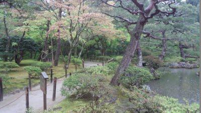 photo_kyotogoriyakupota_higasiyama_4_2015_0420.jpg