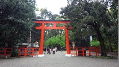 photo_kyotogoriyakupota_rakuhoku_11_2015_0419.jpg