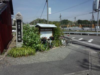 photo_randner_toukaidou_9_yokkaiti_yasu_17_2015_0418.jpg