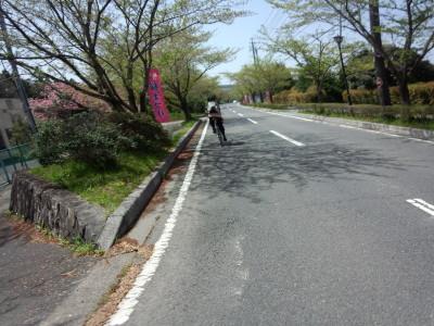 photo_randner_toukaidou_9_yokkaiti_yasu_29_2015_0418.jpg