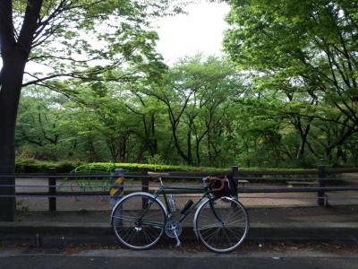 photo_randner_turumigawa_0429_2_2015_0429.jpg