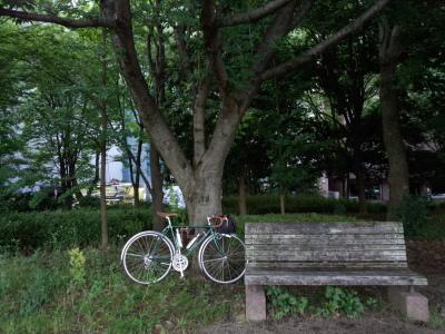 photo_randner_yokohamatsuginami_2_2015_0624.jpg