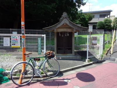 photo_randner_yokohamatsuginami_7_2015_0624.jpg