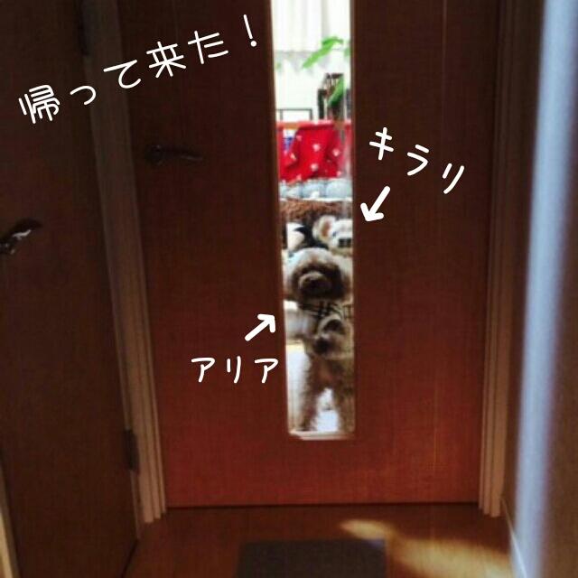 201412291732264b1.jpg
