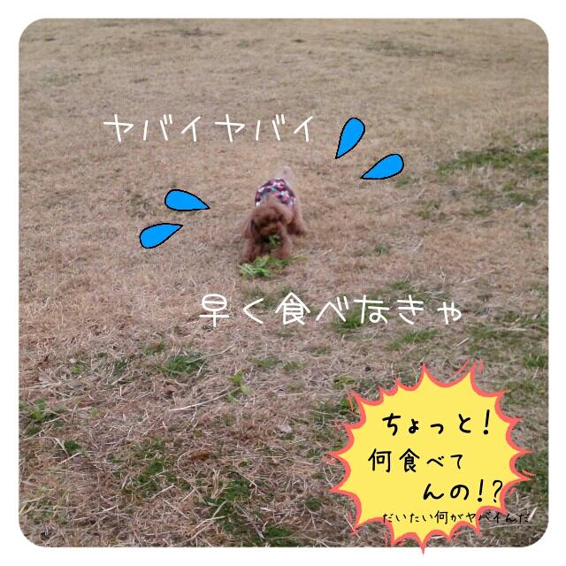 20150131003842047.jpg