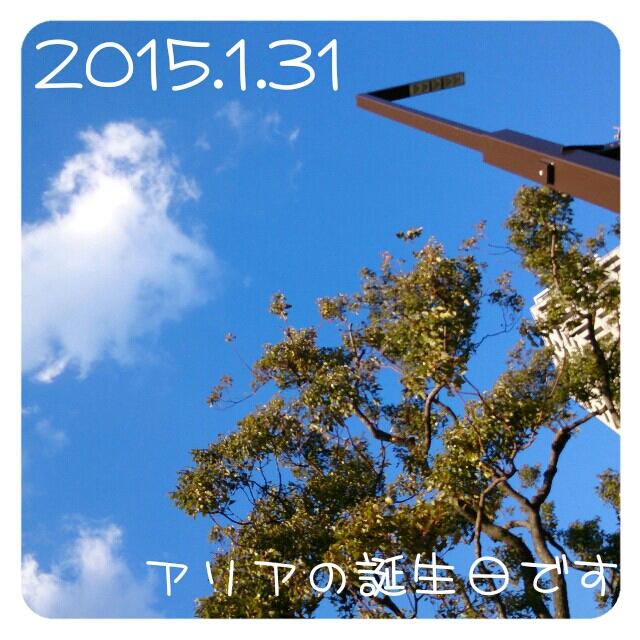 2015013117453476c.jpg
