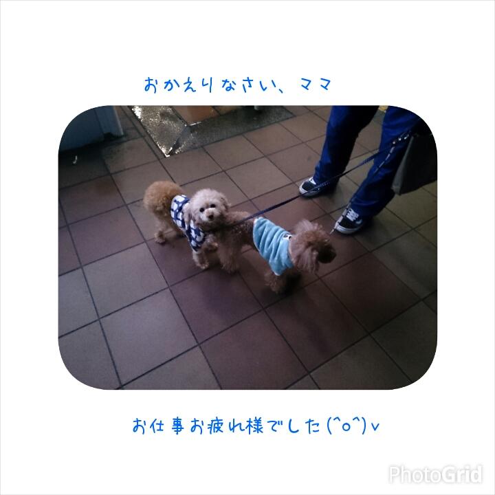 20150316133830bfa.jpg