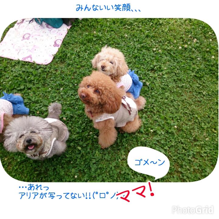 201505080126380e9.jpg