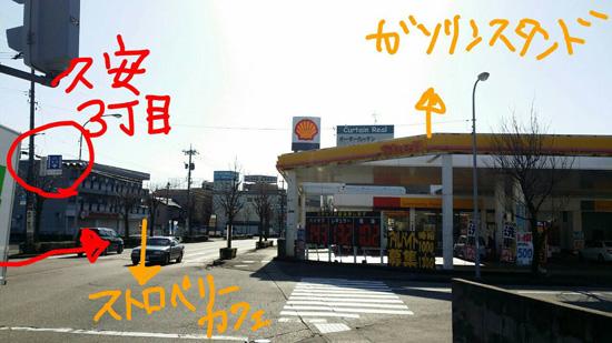 IMG_3733.jpg