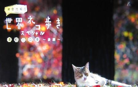 世界ネコ歩きスペシャル「津軽の四季(後編)」