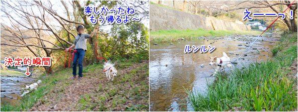 20150319_4.jpg