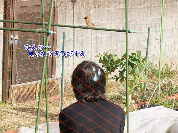 20150320_2.jpg