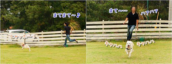 20150512_2.jpg