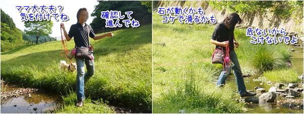 20150515_5.jpg