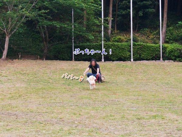 20150520_3.jpg