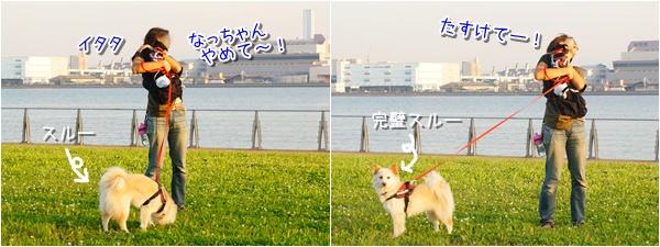 20150528_6.jpg