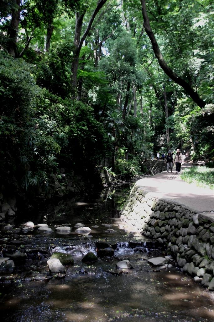 渓谷を更に歩く_4
