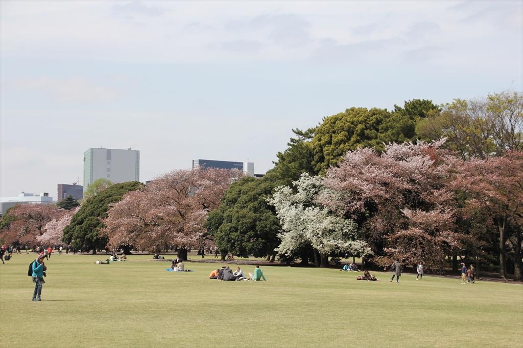 イギリス風景式庭園_1