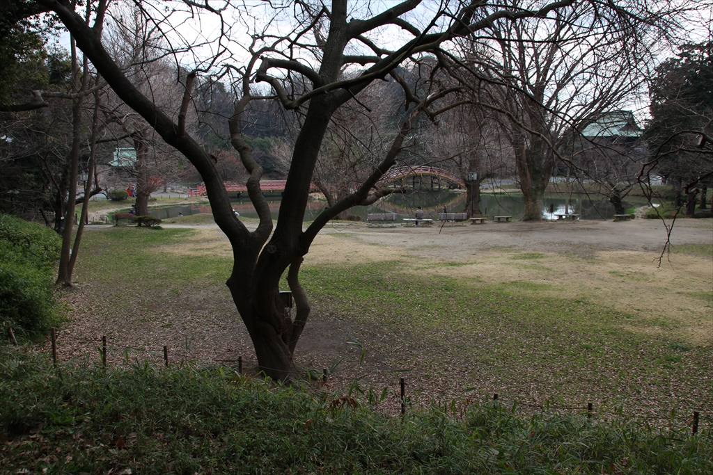 御廟から見た浄土庭園