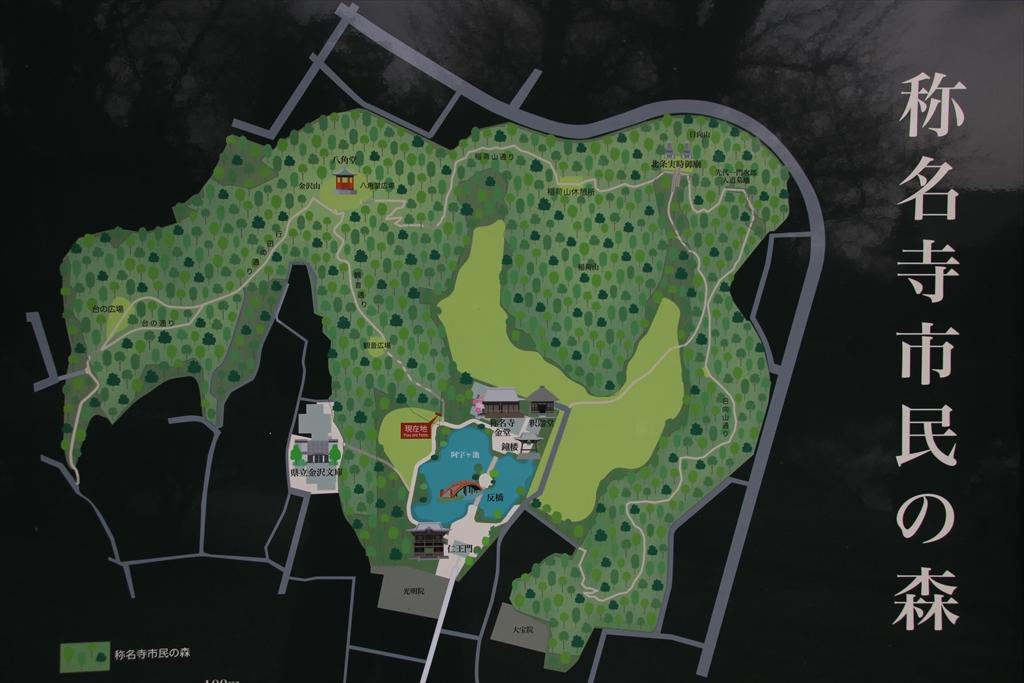 市民の森の案内図