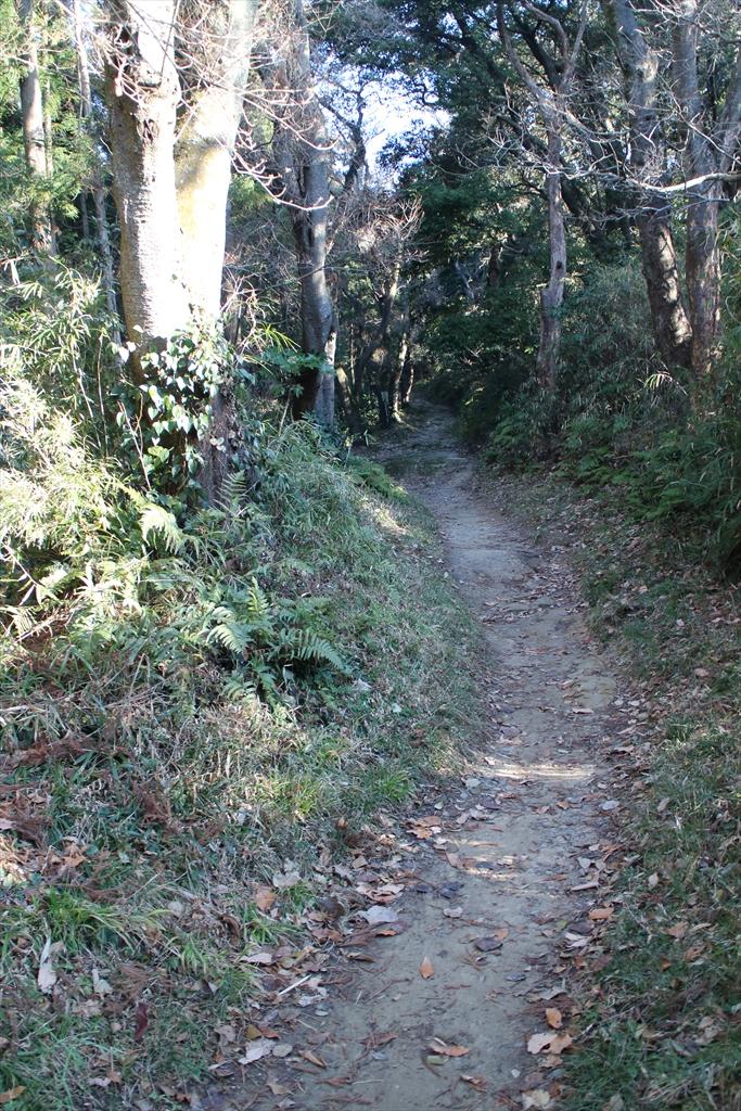 ここから路面が自然石の道に変わる_2
