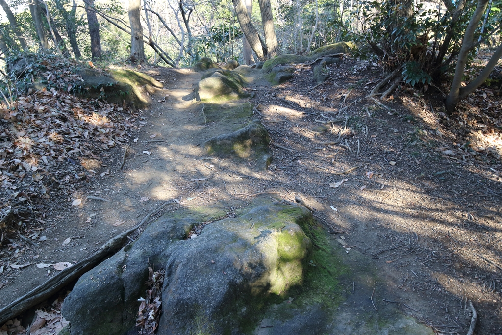 岩石の割合が高くなってきた_2