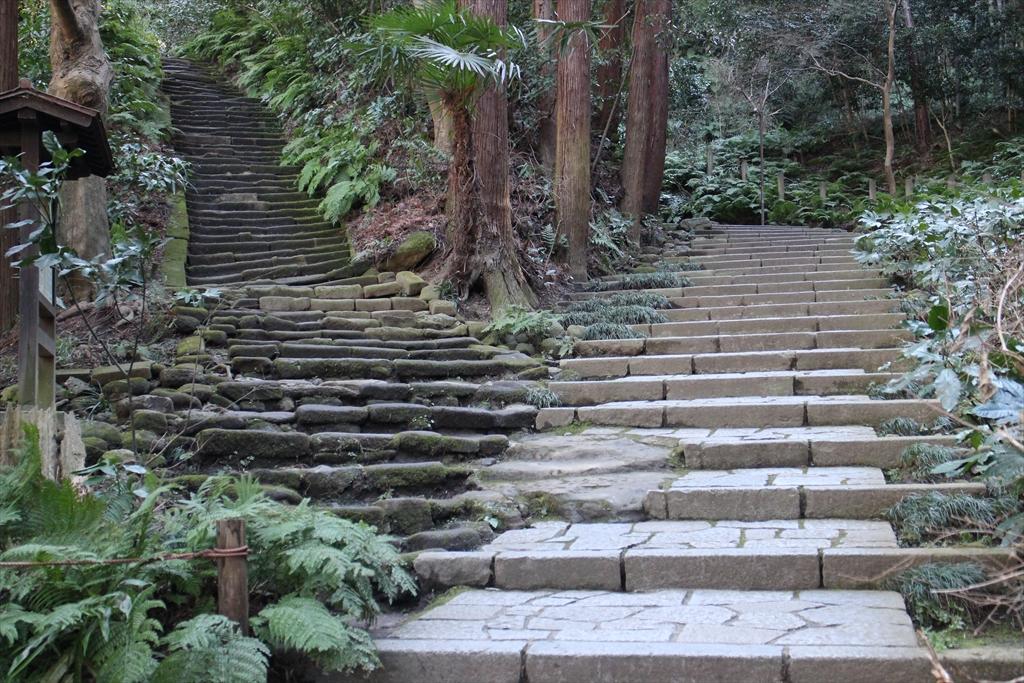いつもの階段