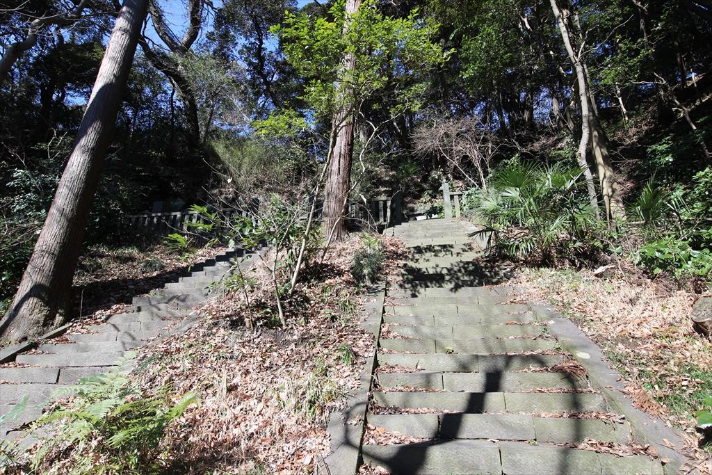 階段も別々_1