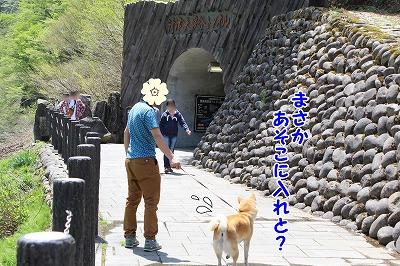 s-kiyosu150725-IMG_7562