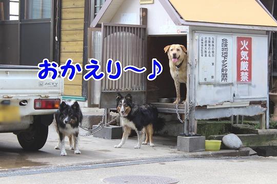 s-nozawa150727-IMG_7723
