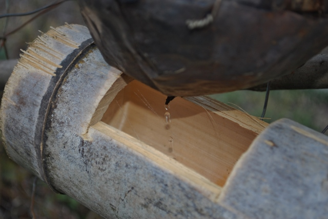 木酢液を抽出!