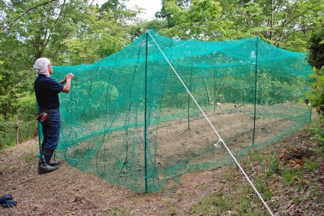 畑のネット