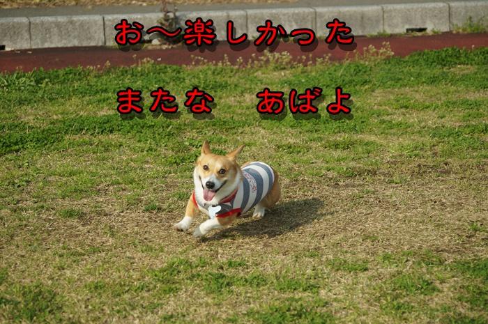 DSC01190.jpg