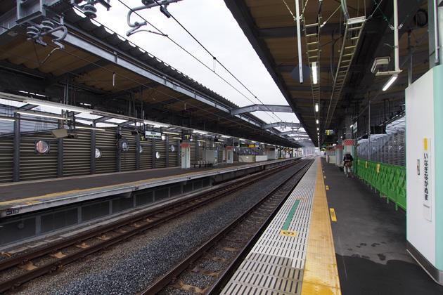 20141229_inagi_naganuma-01.jpg