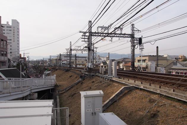 20150207_mukogawa-01.jpg