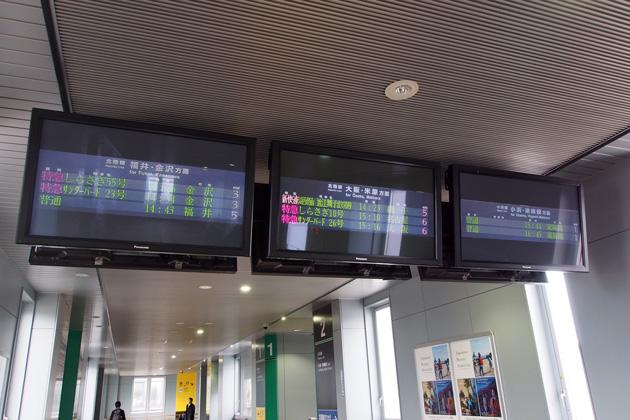 20150315_tsuruga-06.jpg