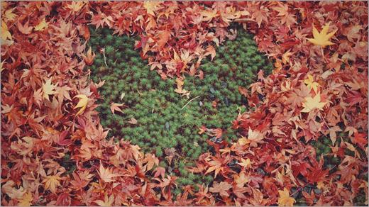 落ち葉で作ったハートマーク