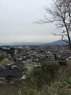 大山 桜まつり 2015 2