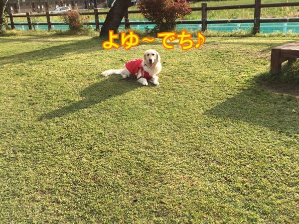fc2blog_20150413211507f39.jpg