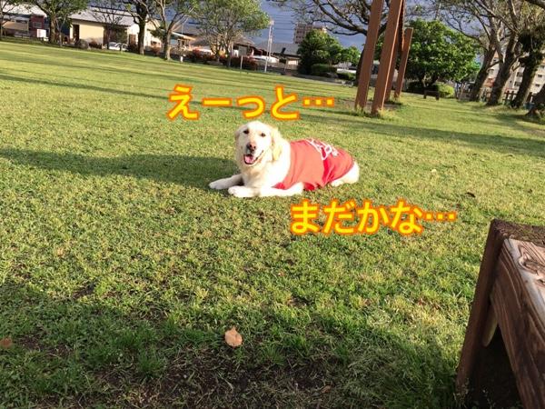 fc2blog_201504132115522c2.jpg