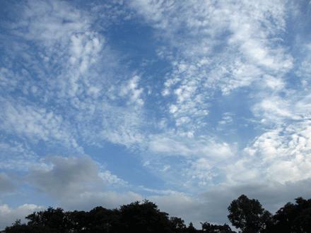 綺麗なお空