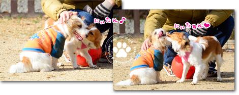 150116_yuasa5.jpg