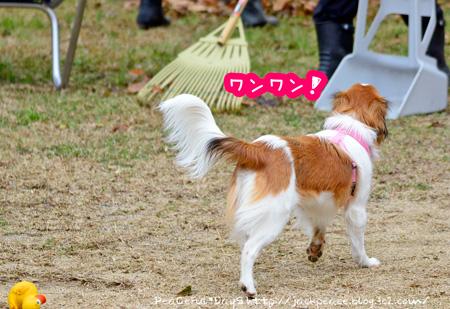 150116_yuasa9.jpg