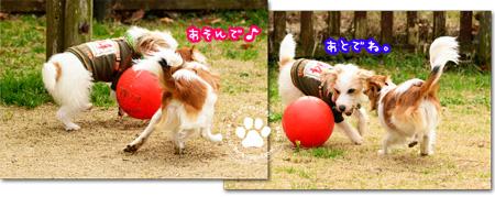 150203_yuasa10.jpg
