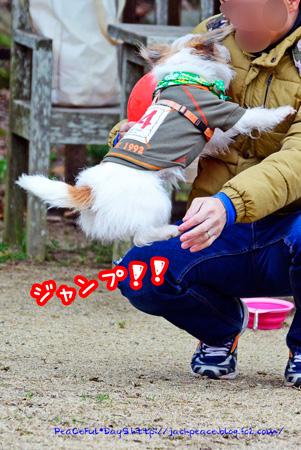 150203_yuasa2.jpg